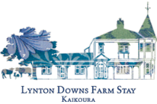 lynton downs farmstay